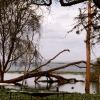 Lake Navaisha, Kenya